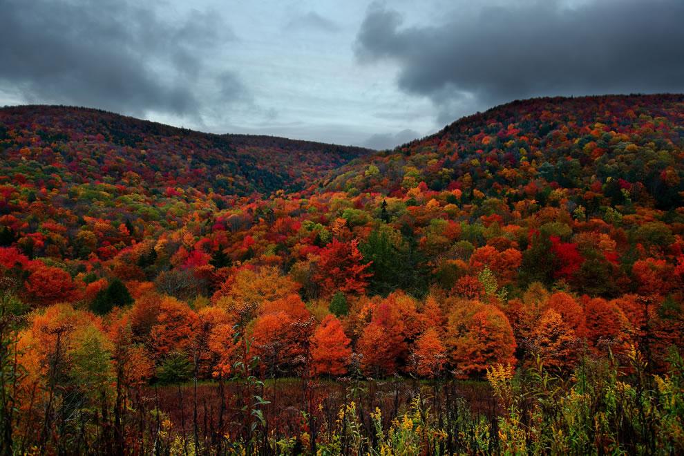 Autumn mountain peak foliage colors, West Virginia