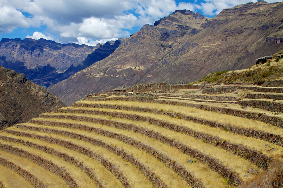 Andenes, terraces around Pisac ruins, Sacred Valley, Peru