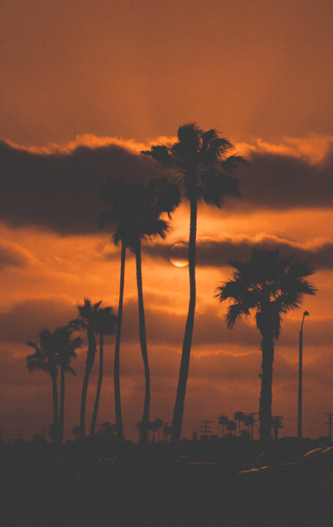 Dark Orange California Sunset Pictures Photos And Images For Facebook Tumblr Pinterest And