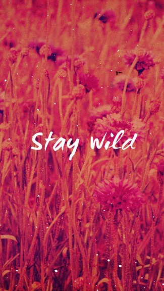 Stay Wild Pictures Photos And Images For Facebook