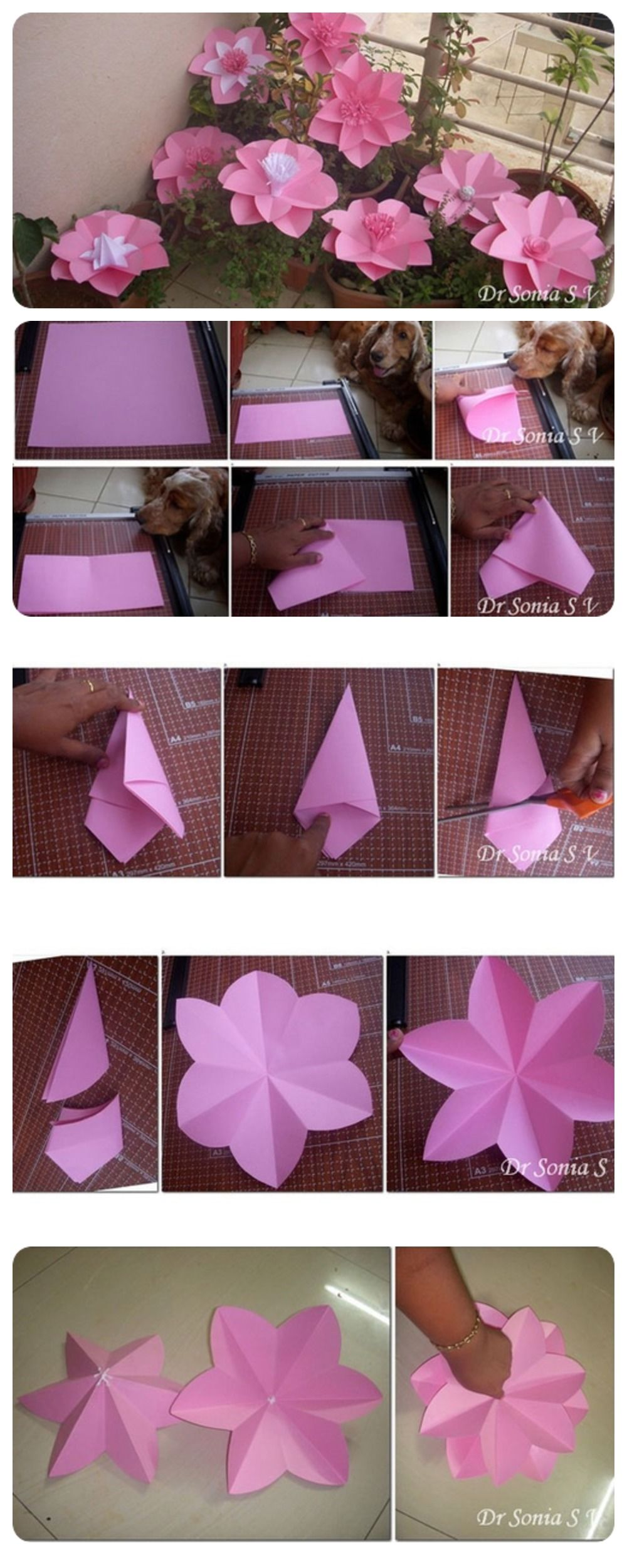 Paper Flowers Tutorial Pictures Photos And Images For