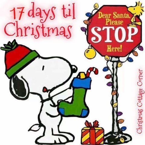 Image result for 17 until christmas