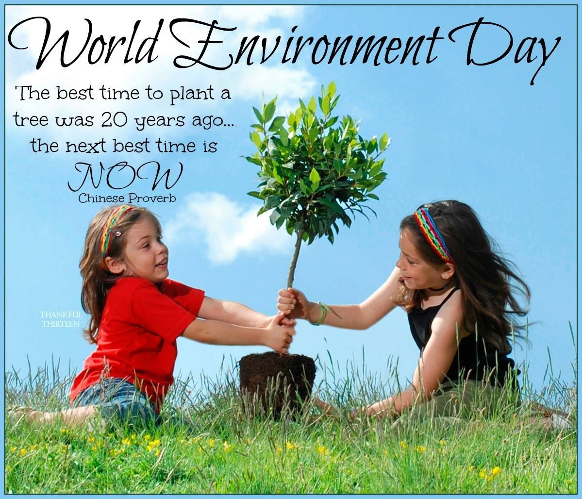 World Environment Day Quote Pictures Photos And Images