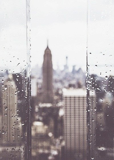Raindrops On The Window Pictures Photos And Images For