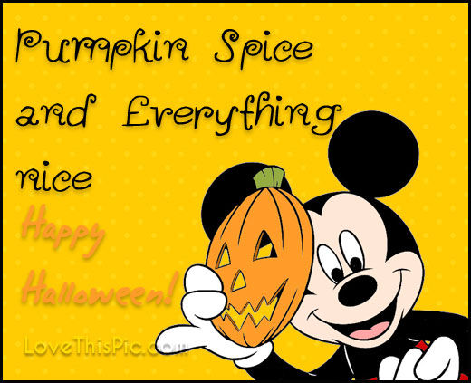 Pumpkin Spice And Everything Nice Pictures Photos And