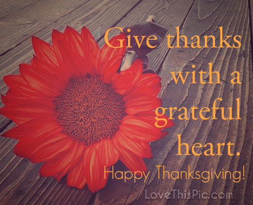 Grateful Quotes And Sayings