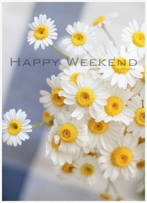 Pretty Happy Weekend Quote Pictures Photos And Images