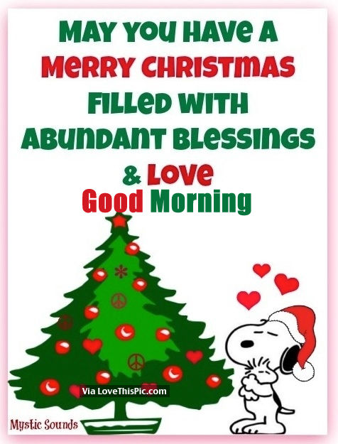 May You Have A Merry Christmas Filled With Abundant