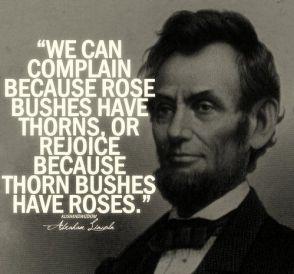 תוצאת תמונה עבור we can complain because rose bushes have thorns