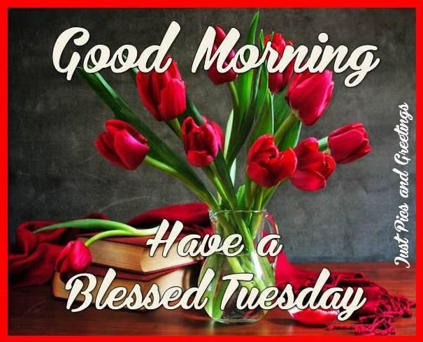 Pretty Good Morning Tuesday Blessings Quote Pictures