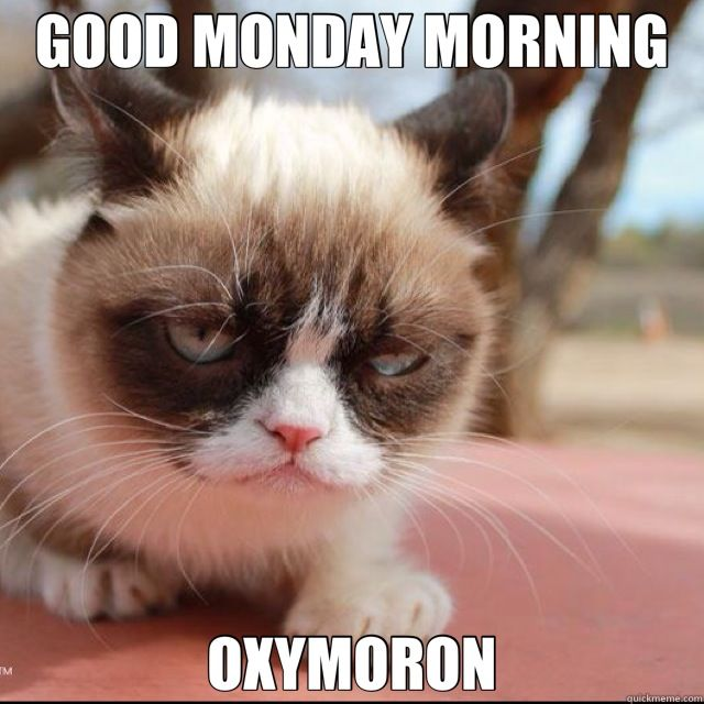 Good Monday Morning, Oxymoron Pictures, Photos, and Images for Facebook,  Tumblr, Pinterest, and Twitter