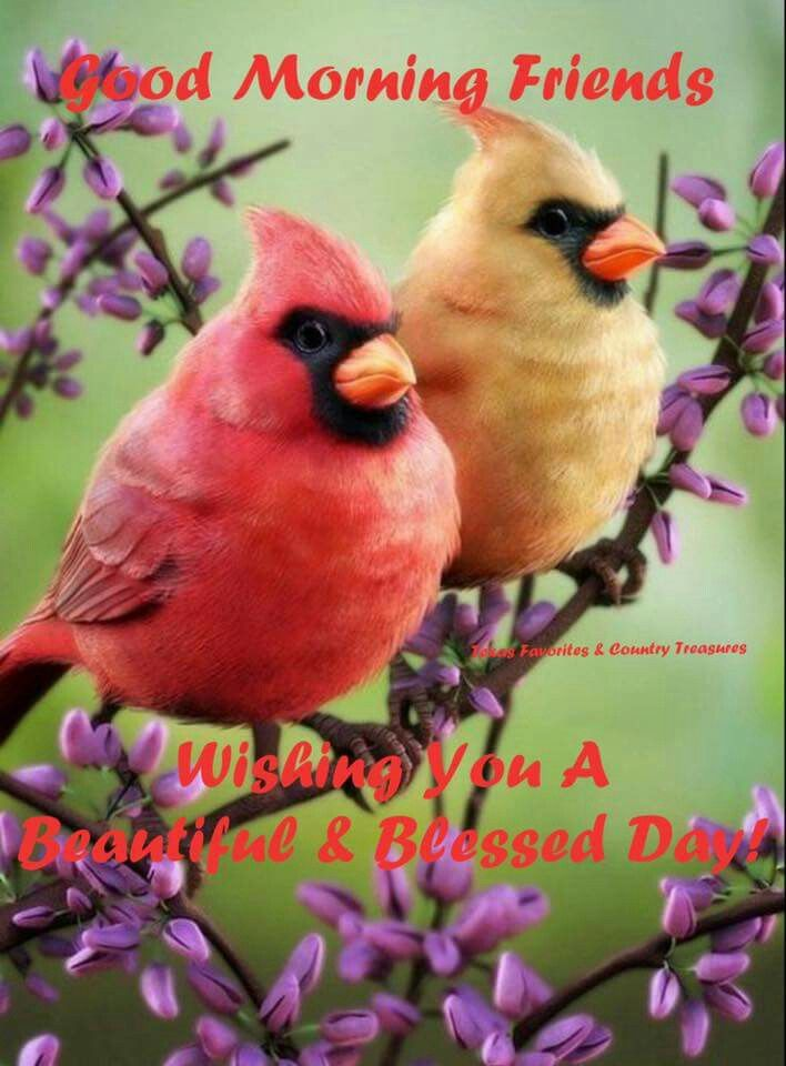 Blessed Quotes Sunday Morning Greetings
