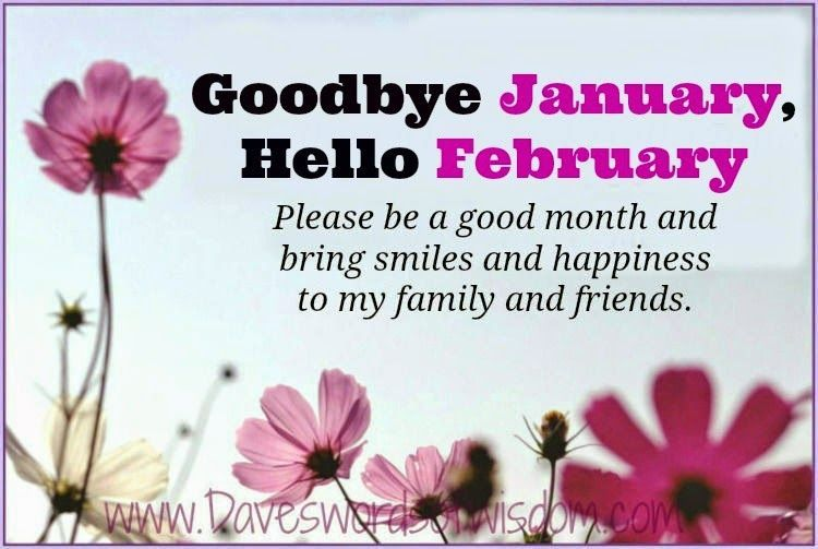 Image result for goodbye january hello february