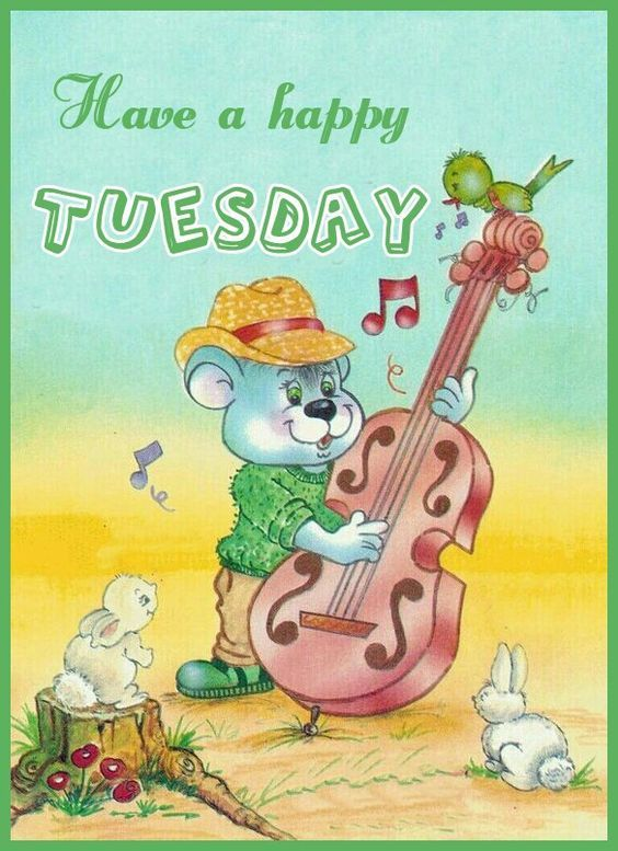 Have A Happy Tuesday Pictures Photos And Images For
