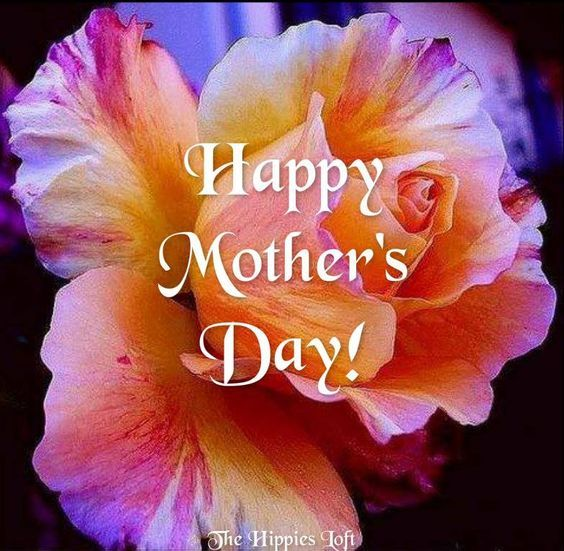 Happy Mothers Day Flower Pictures Photos And Images For