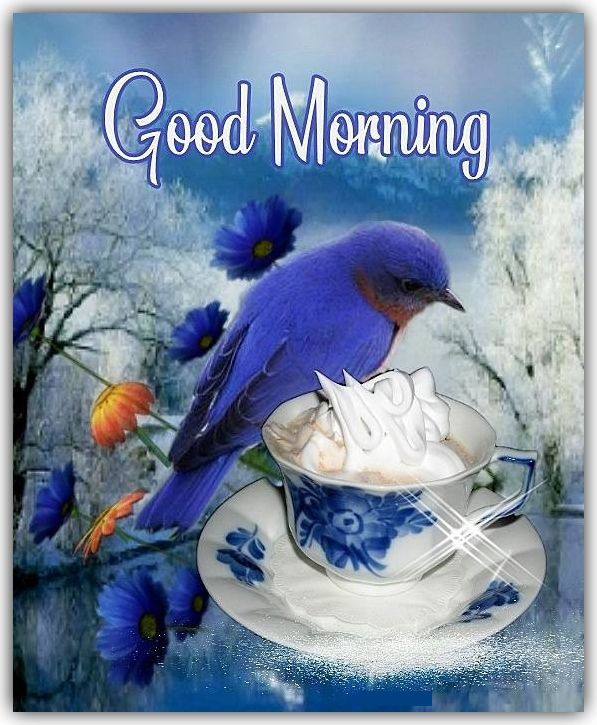 Beautiful Blue Bird Good Morning Quote Pictures Photos