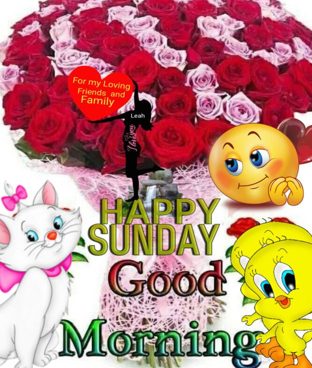 Good Morning Happy Sunday Pictures, Photos, and Images for Facebook, Tumblr, Pinterest, and Twitter