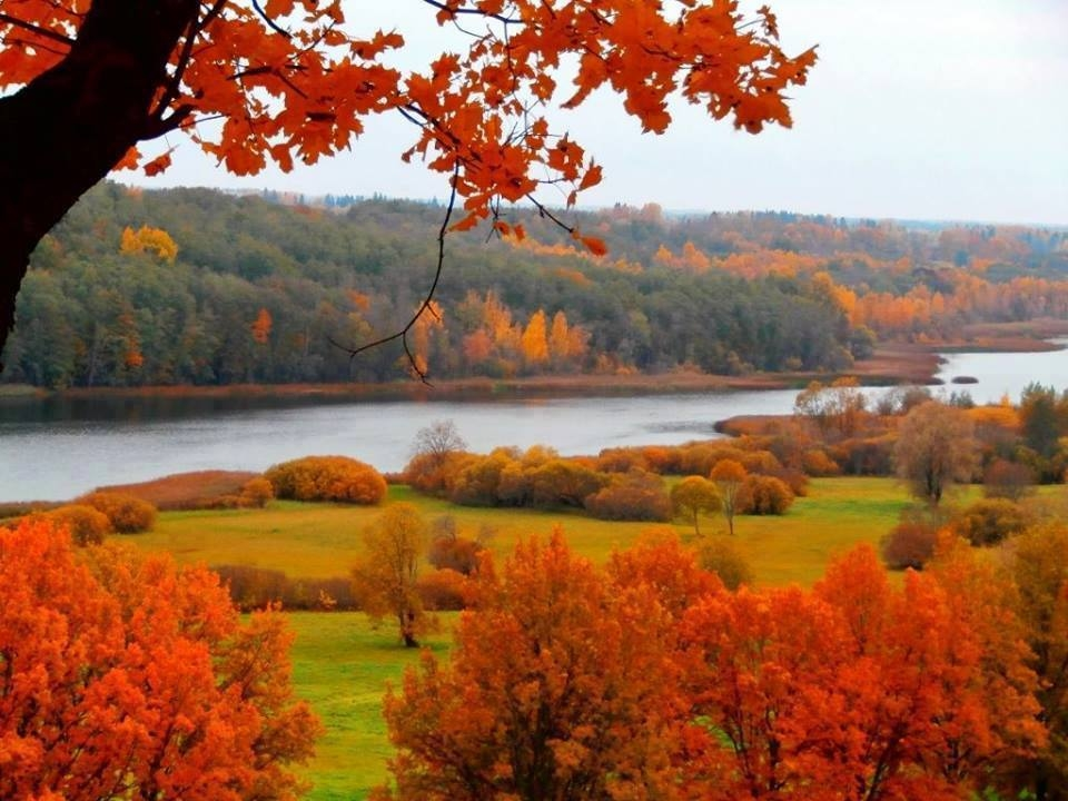 The Beauty Of Autumn Foliage Pictures Photos And Images