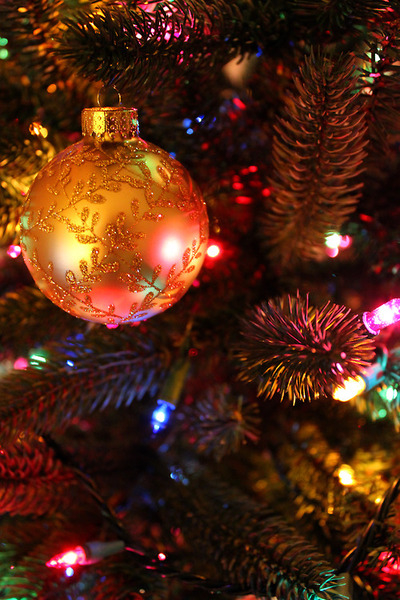 Christmas Ornament And Pinecones Pictures Photos And