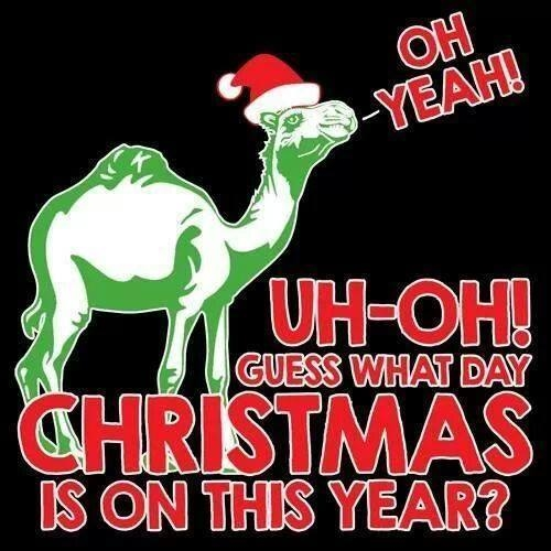 Christmas Is On Hump Day Pictures Photos And Images For