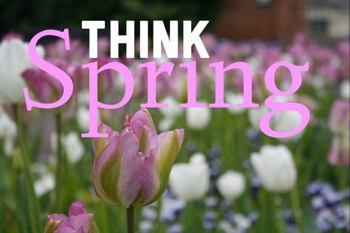 Image result for Think Spring