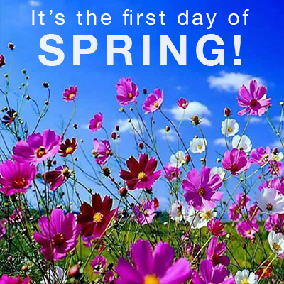 Image result for First day of Spring