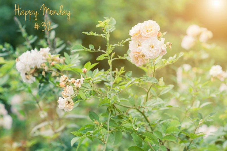 L&T_happy monday 32_fleurs