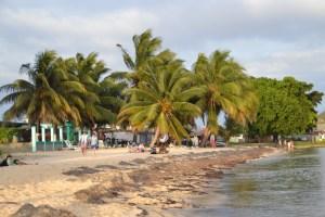 Playa Larga, beach