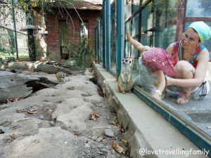 City Breaks Belgrade. Serbia with kids. What to do in Belgrade