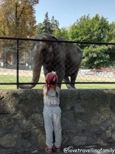 Zoo Kalemegdan, Serbia, Belgrade with kids, Love travelling family