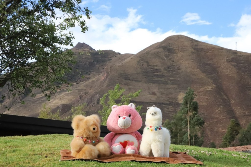 Sacred Valley - with my new furry friends