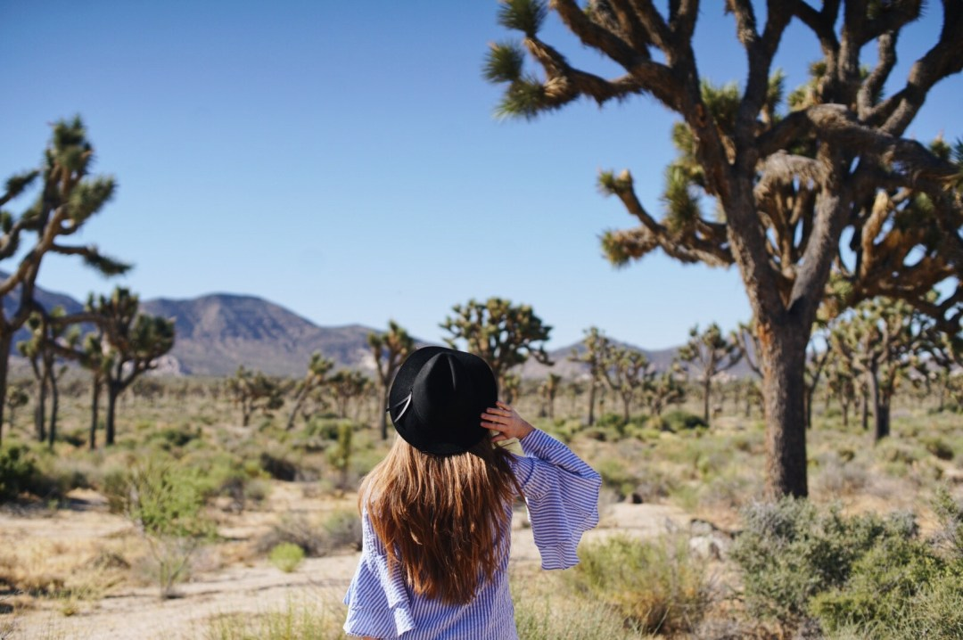 Van Life Joshua Tree Travel Blog Blogger Love You More Too
