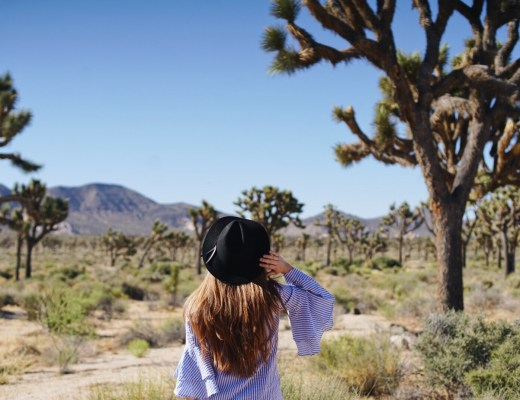 Van Life Joshua Tree Travel Blog Blogger Love You More Too