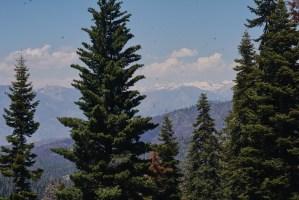 Van Life King's Canyon Sequoia National Park LoveYouMoreToo