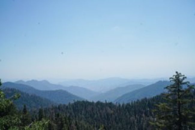 Van Life King's Canyon Sequoia National Park LoveYouMoreToo