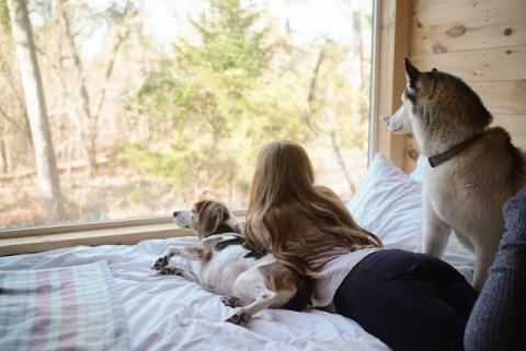 Getaway Dallas cabin