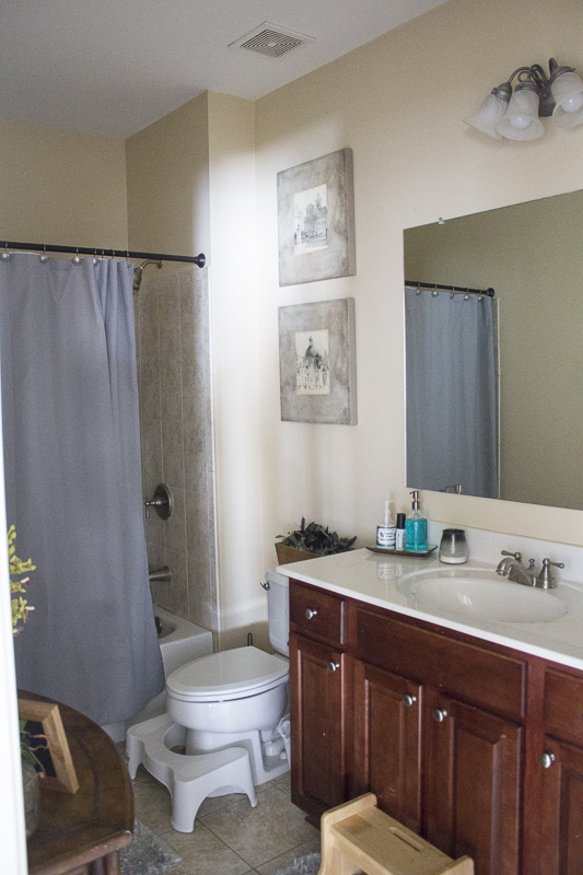 one-room-challenge-bathroom-makeover| loveyourabode |