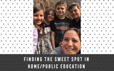 Finding the sweet spot in home/public education