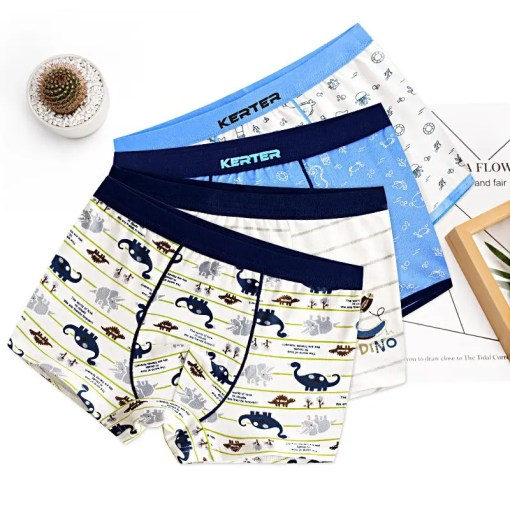 Boy's Cotton Underwear Set