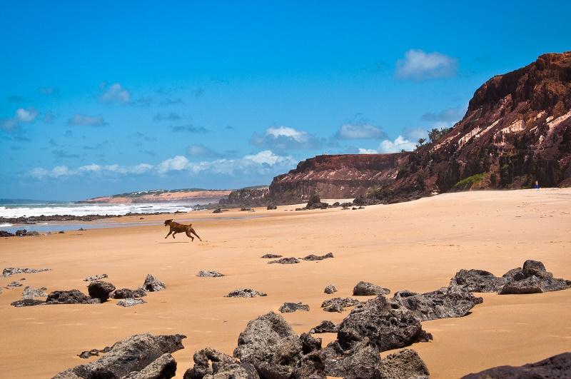 pipa-beach-0