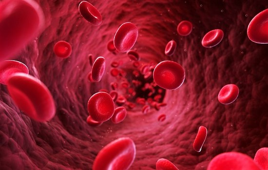how to increase blood flow to penis naturally