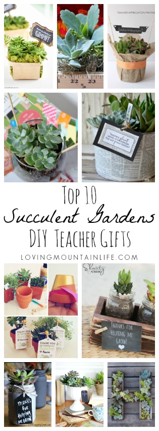 DIY Succulent Gardens for Teacher Gifts from Loving Mountain Life