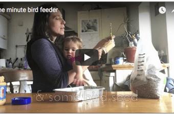 One minute bird feeder