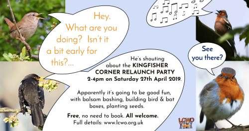Kingfisher Corner relaunch party! Build a bat box and more @ Kingfisher Corner, far corner of Botley Park