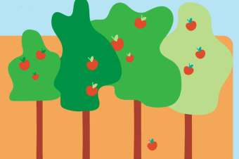 How to care for fruit trees – powerpoint and booklet