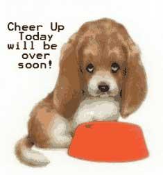 Cheer_up_ani.jpg