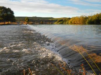 Bortons Pond (4)
