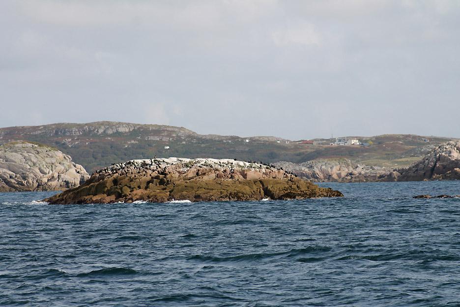 Torran Rocks [www.loweswatercam.co.uk]