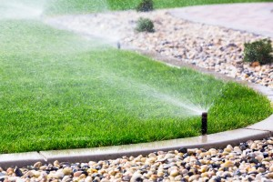 Sprinkler system keeping lawn maintained in california drought