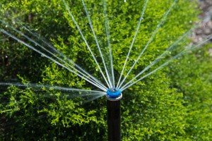 water saving sprinkler head installed in Sacramento, CA